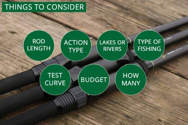 Carp Rod Reviews