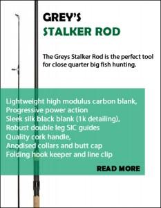 greys stalker rod
