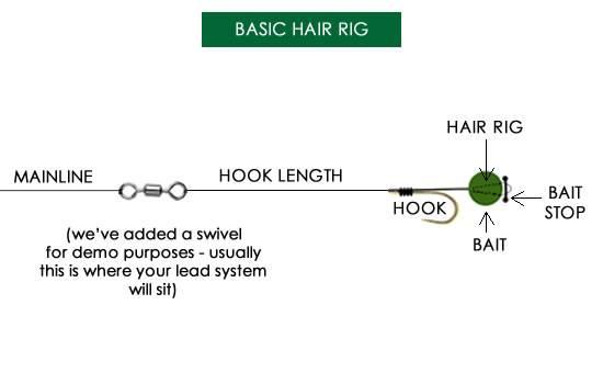 Basic Hair Rig