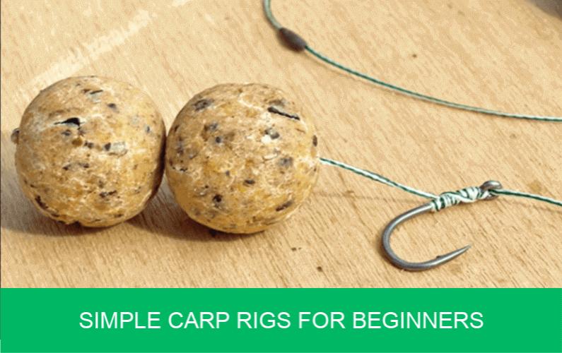 carp rigs for beginners