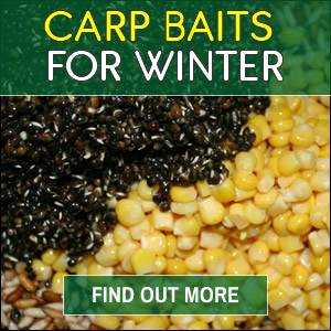 Carp Baits for Winter