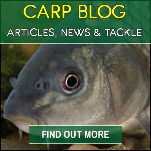 Carp Blog