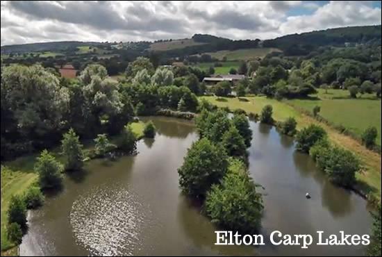 Elton Carp Lakes
