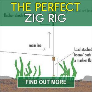 The Perfect Zig Rig