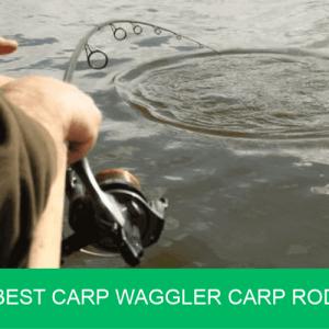 best carp waggler rod