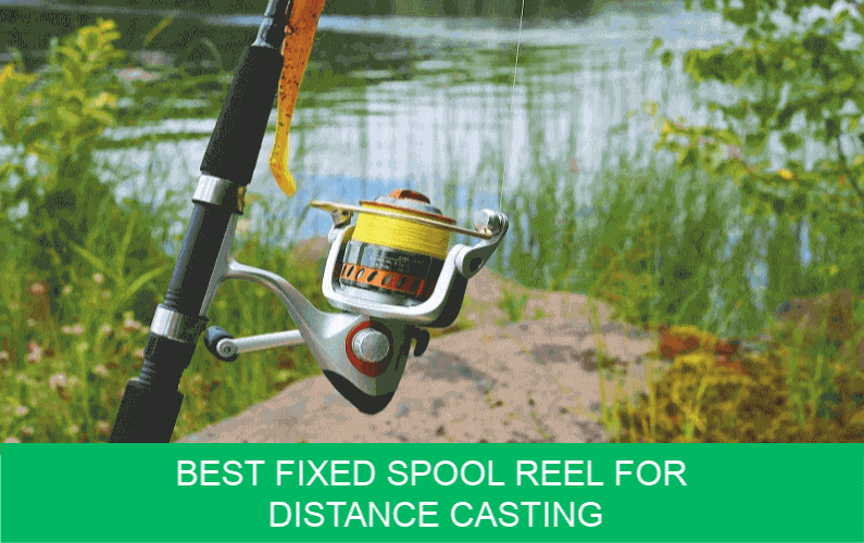 Best Fixed Spool Reel for Distance Casting