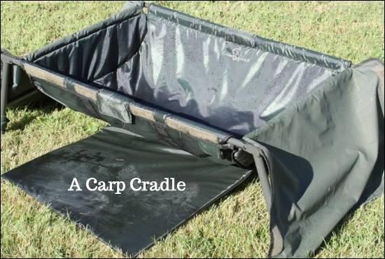 Carp Cradle