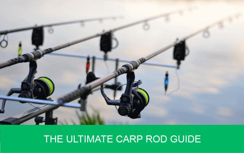 The Ultimate Carp Rod Guide - Carp n Bait