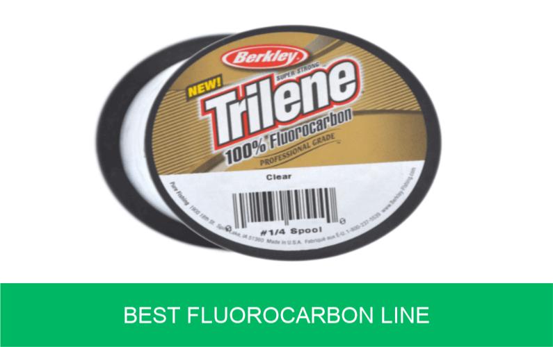 Best Fluorocarbon Fishing Line (Mainline, Reviews) | Carp n Bait