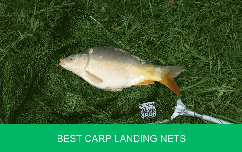 best carp landing nets