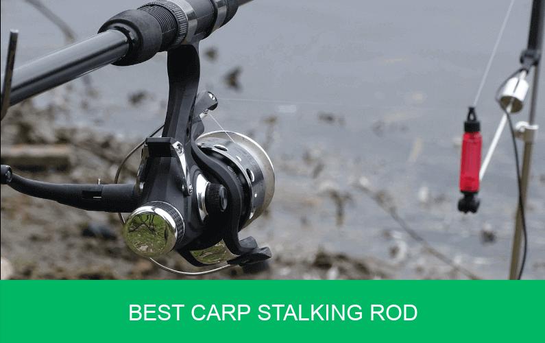 carp stalking rod