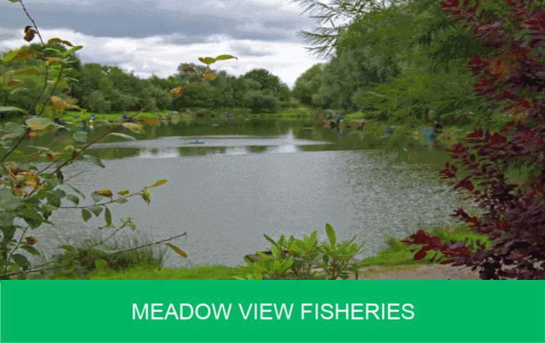 Meadow View Fisheries