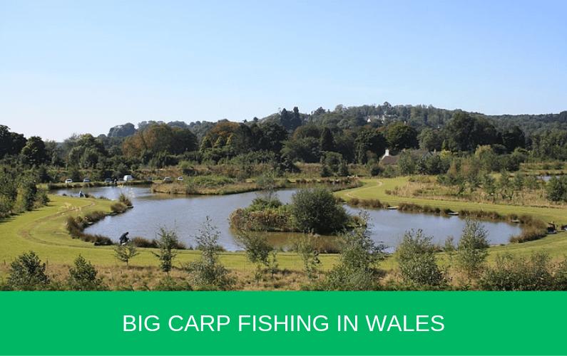 Big Carp Fishing in Wales
