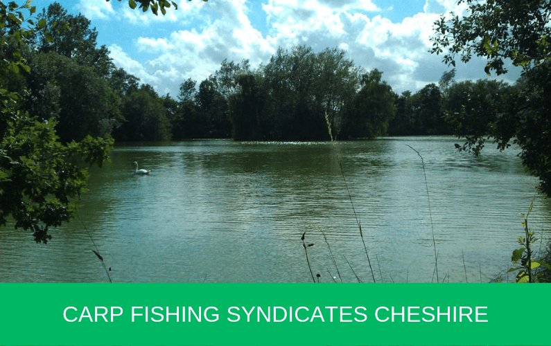 Carp Fishing Syndicates Cheshire