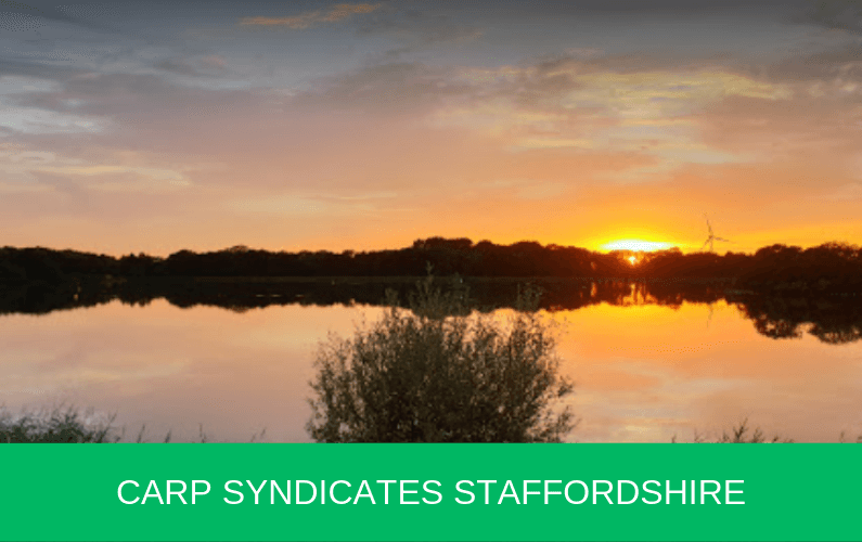 Carp Syndicates Staffordshire