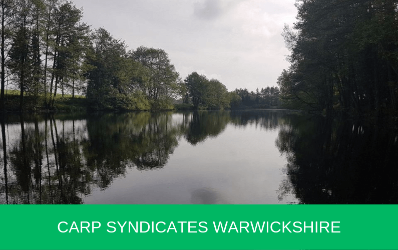 Carp Syndicates Warwickshire