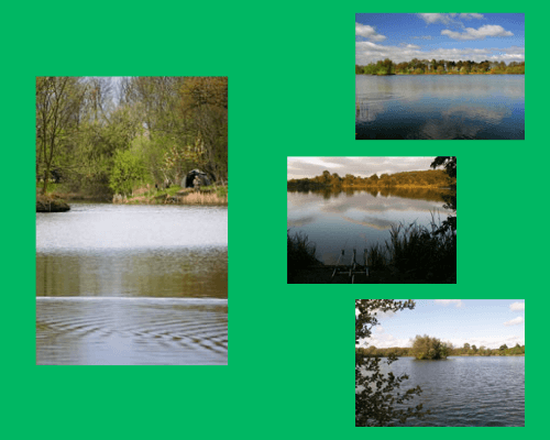 Catton Park Fishery