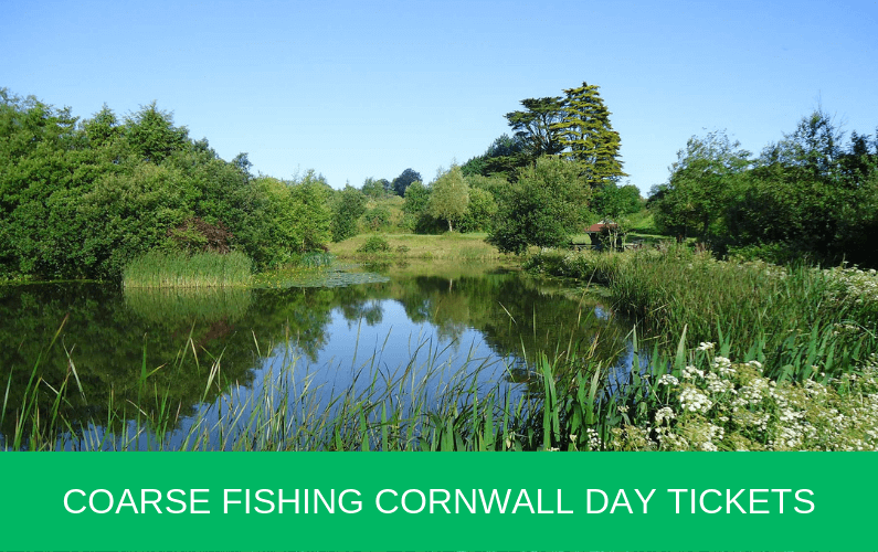 Coarse Fishing Cornwall Day Tickets