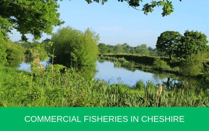 Commercial Fisheries in Cheshire
