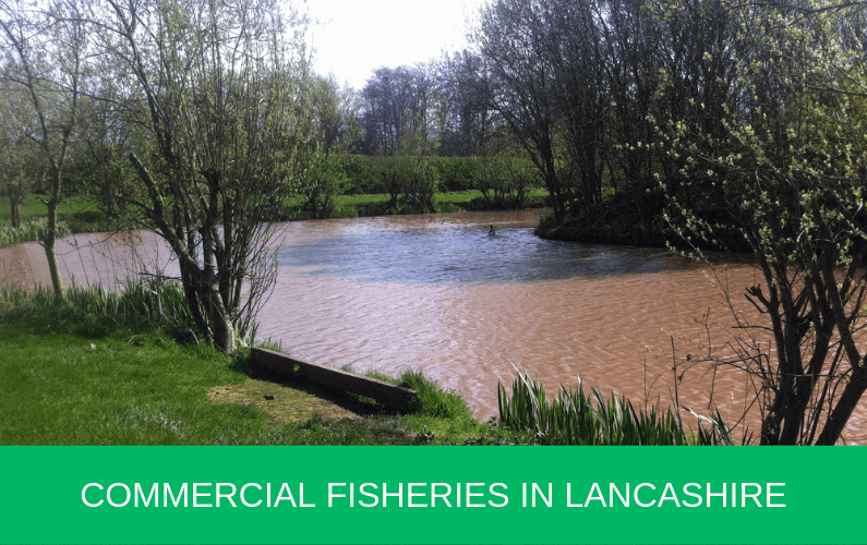 Commercial Fisheries in Lancashire