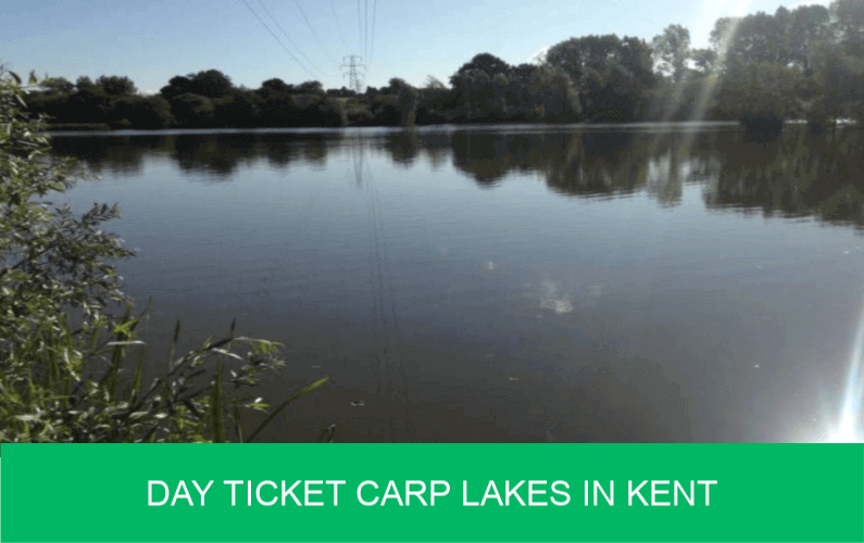 Day Ticket Carp Lakes in Kent