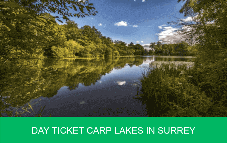 Day Ticket Carp Lakes in Surrey