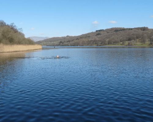 Esthwaite Water Trout Fishery