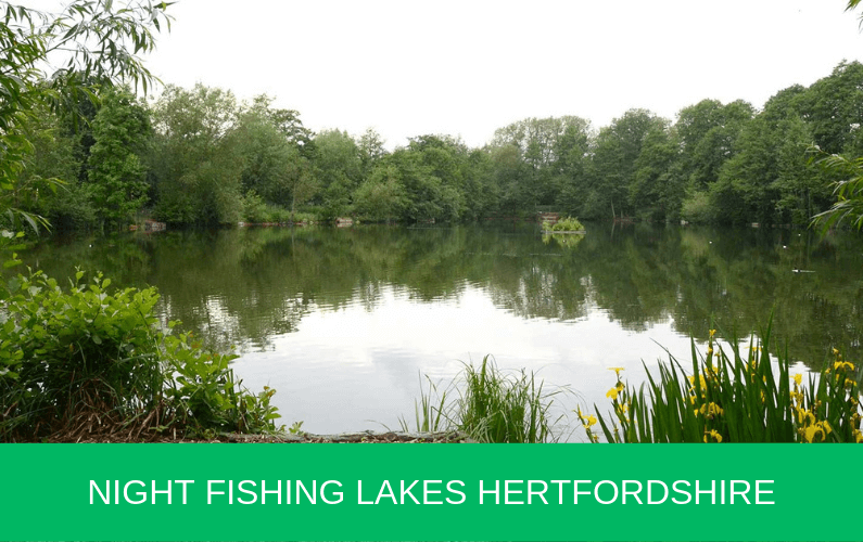 Night Fishing Lakes Hertfordshire