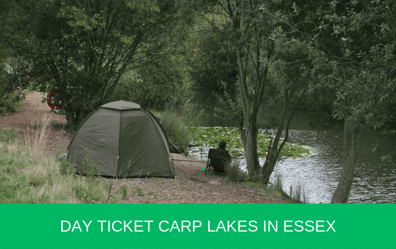 Day Ticket Carp Lakes in Essex
