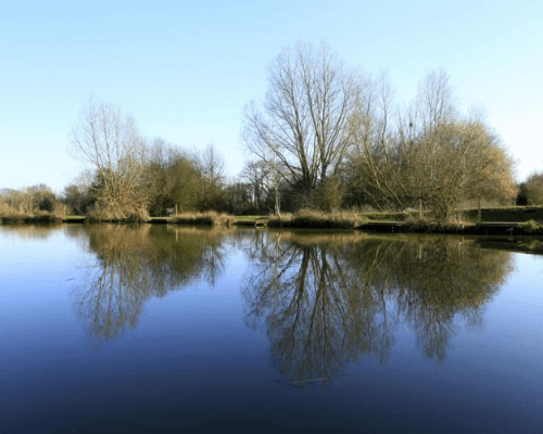 Newland Hall Fishery