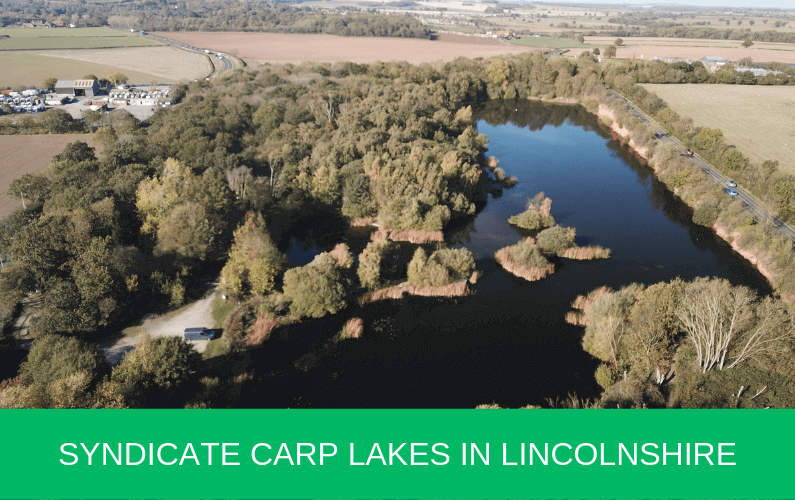 Syndicate Carp Lakes in Lincolnshire