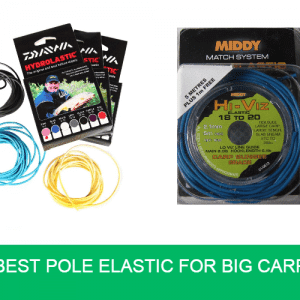 Best Pole Elastic for Big Carp