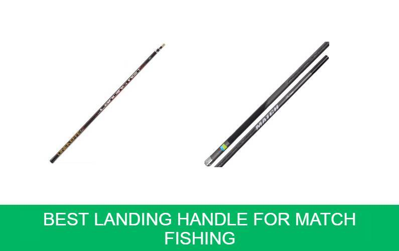 Best Landing Handle for Match Fishing