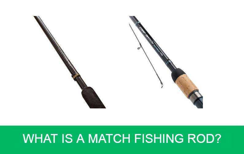 What is a Match Fishing Rod